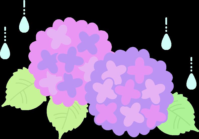 紫陽花のイラスト / 梅雨の ... : 塗り絵 素材 : すべての講義