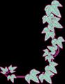 アイビーの葉っぱ蔦フレームイラスト