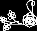 バラのフレームイラスト