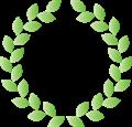 月桂樹、緑