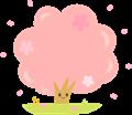 桜の木のフレーム、カラー