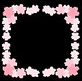 桜の花の枠四角