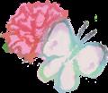 手書きカーネーション花弁と蝶々のイラスト