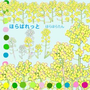 早春、菜の花のイラスト