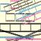 カメラのフィルム(ネガ&ポジ)のフォトフレーム / 写真ギャラリー枠の定番