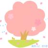 開花!ほんわかかわいい桜の木のイラスト / 透過