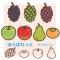 秋の果物イラスト / ぶどう(マスカット)、柿、リンゴ、赤・青りんご、洋ナシ(ラフランス)